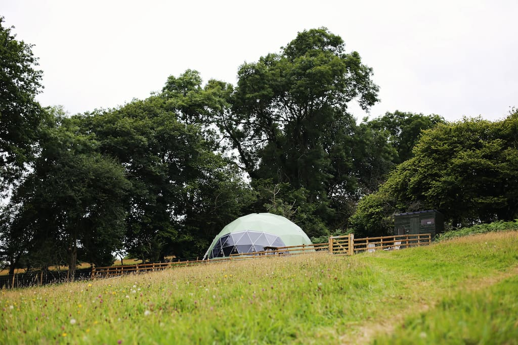 The geodome nestled at the top of the field