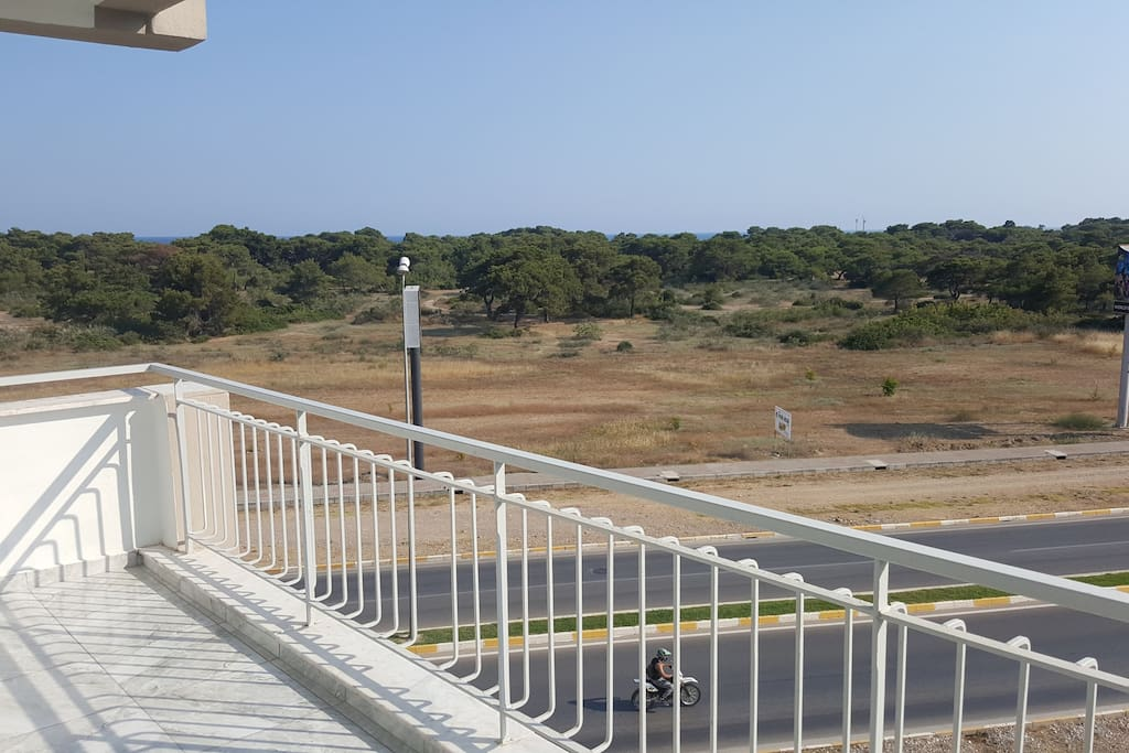 Brilliant view to the Pine Forrest and a bit of the sea