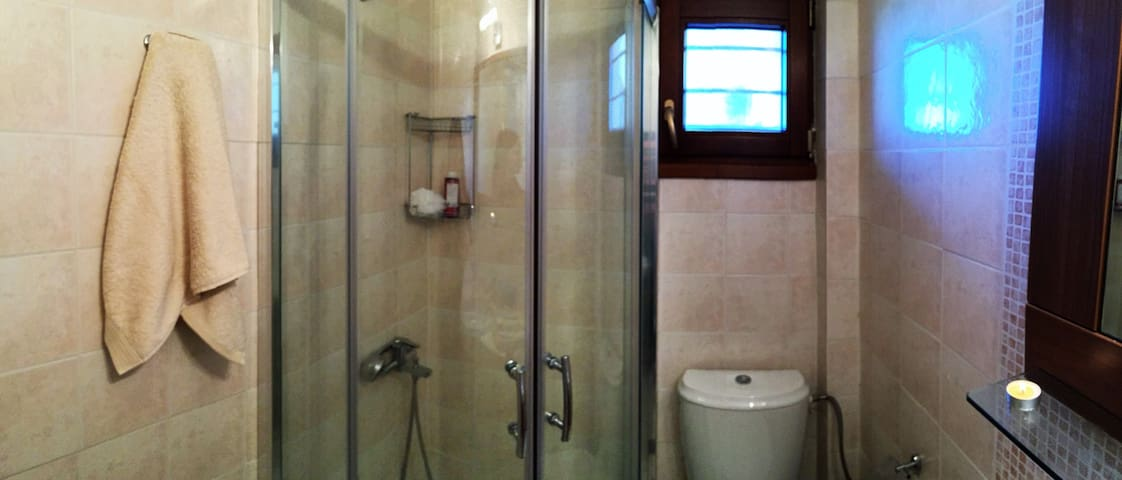 the bathroom with shower cabin