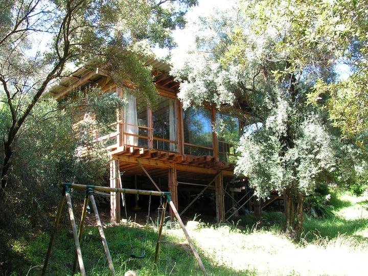 Maison en bois sur rivière près d'Ajaccio