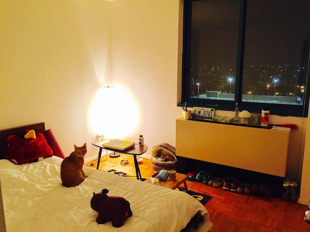 Roosevelt Island Cozy Private Room - New York - Wohnung