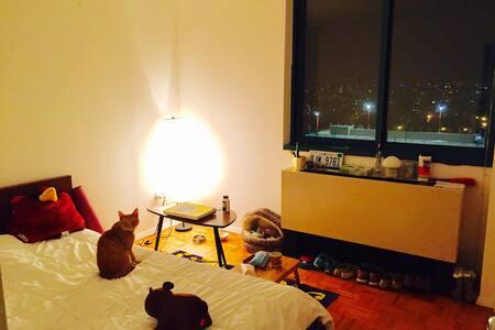 Roosevelt Island Cozy Private Room - New York - Lejlighed