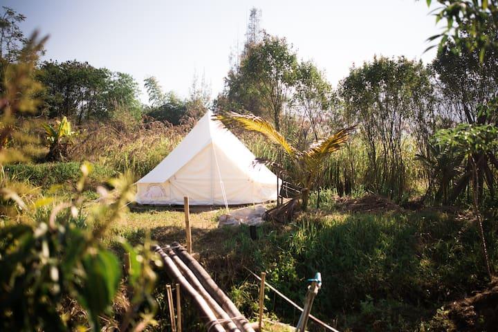 Bell Tent Glamping dans une ferme de permaculture