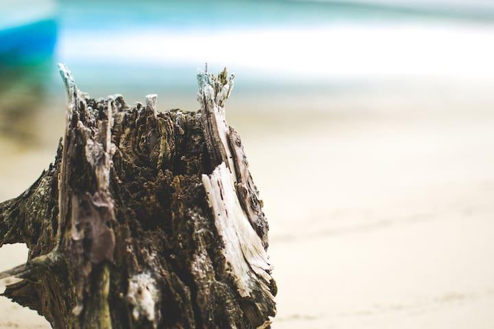 Walk to the Ocean from this Beach Community - Navarre - Osakehuoneisto