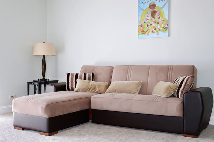 The living room couch which converts into a bed.