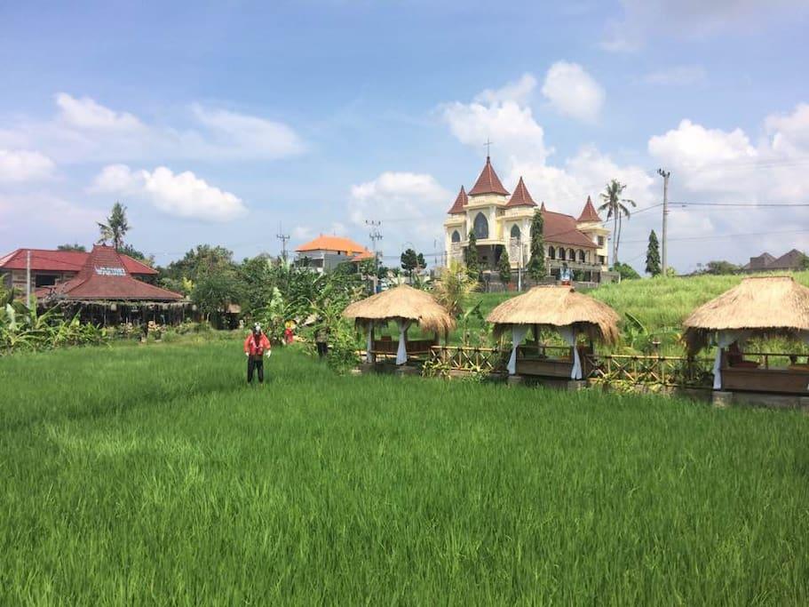 KTS View