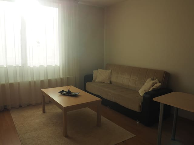 Prusu studio apartment - Rīga