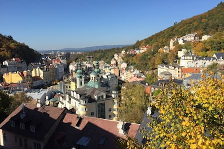 The most amazing view of the city! Room for 1 p. - Karlovy Vary - Loft