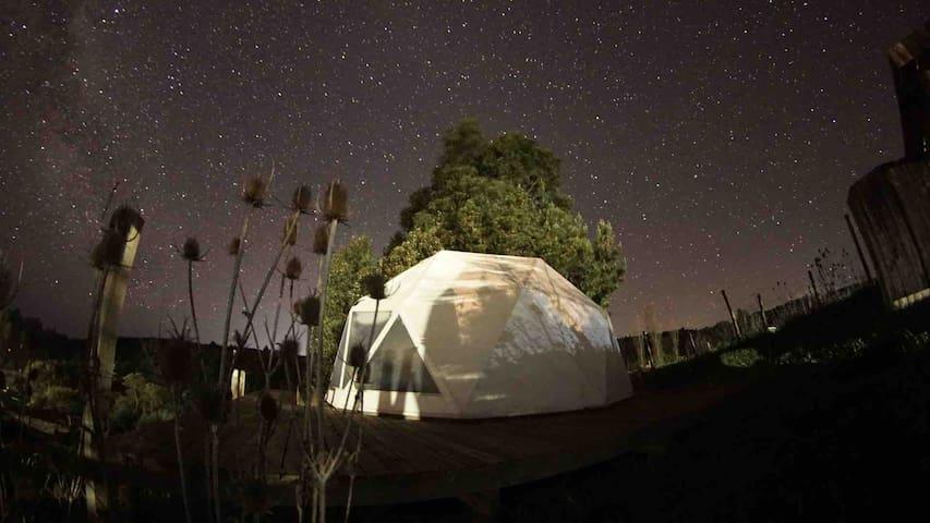 Peuño Domo (Camping la Ola)