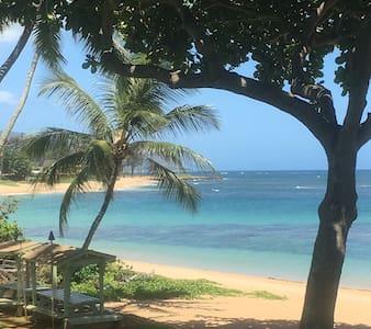 Ocean Front Condominium - Haleiwa