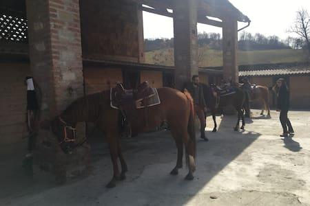 Immergiti nella natura tra cavalli e buon cibo