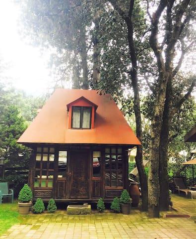 Rustic Cabin in Mexico City !! - Ciudad de México  - Lägenhet
