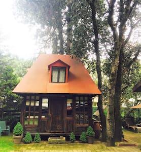 Rustic Cabin in Mexico City !! - Ciudad de México  - Apartment