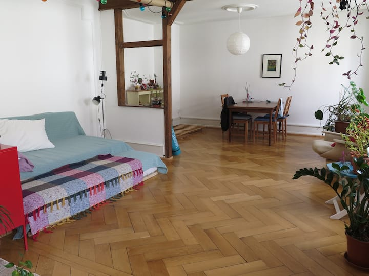 Entire Home Next to Basel Train Station (SBB)