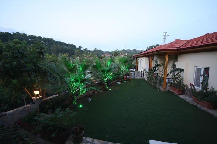 three palms cennet bahçesi