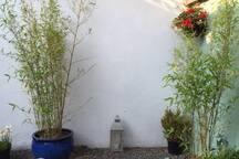 Patio/ Town Garden