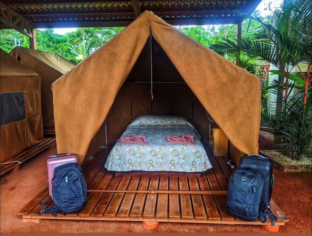 Safari Tent Arenal Backpackers Resort #3
