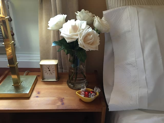 Private Room in a Riverside Duplex Apt. - New York - Apartment