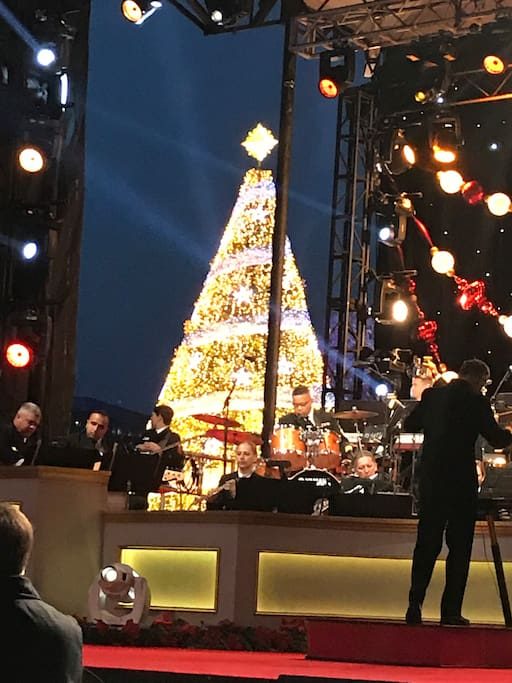 Things are happening here all year -- like the lighting of the National Christmas Tree!