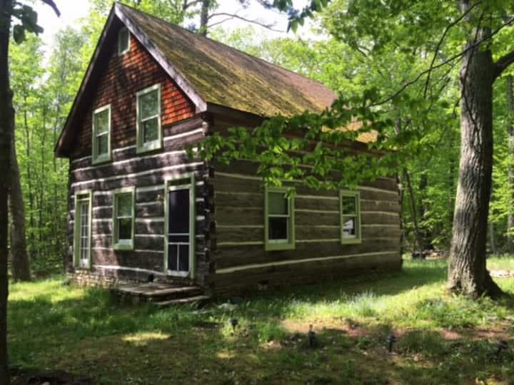 Fish Creek, WI: Sweet log cabin & meditation paths