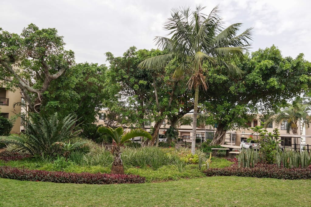 The lush gardens of the Shades in front of the apartment.