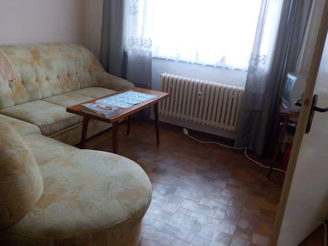 byt s dostupností vlaku i autobusu,pohostinství - Břeclav - Appartement