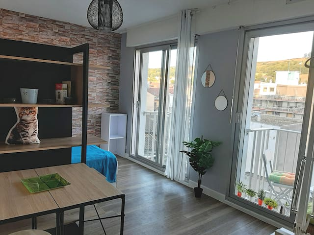 Appartement zen, au calme, lumineux avec 2 balcons