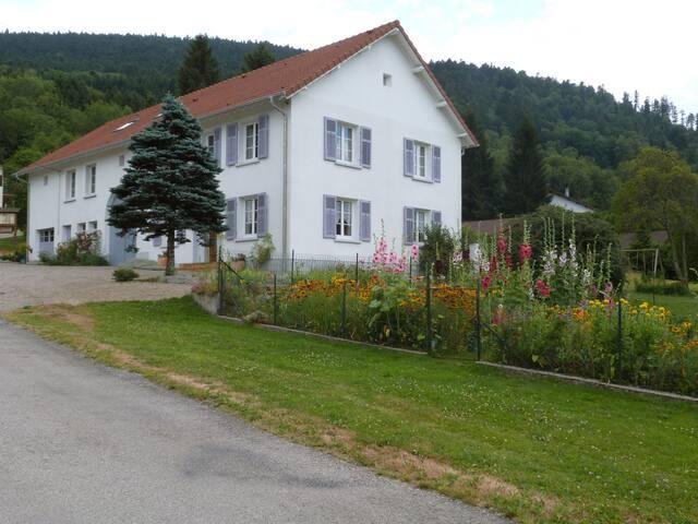 proche Gerardmer gite 14  couchages - Ban-sur-Meurthe-Clefcy - House