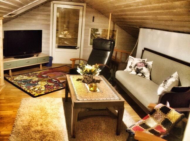 Viihtyisä pieni talo