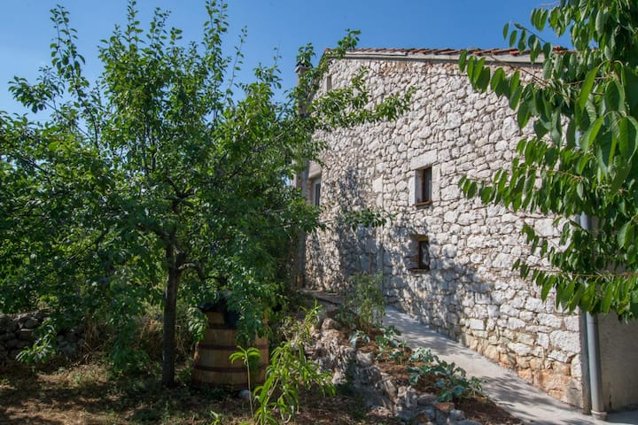 """Terra Antica"" Stone House - Green Apartment"