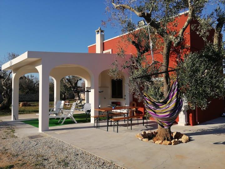 Villa Elia, circondata da ulivi secolari