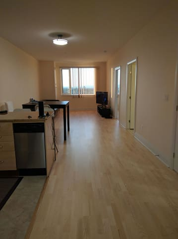 New 2 bedroom Spacious Luxury Apartment w/Parking - Ottawa - Apartment