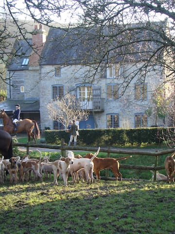 The Bark Mill - North Wootton - Bed & Breakfast