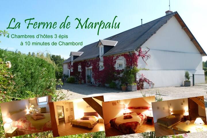 Chambre Souchet pour 3 - Chambord à 10 mn - La Ferté-Saint-Cyr - Bed & Breakfast
