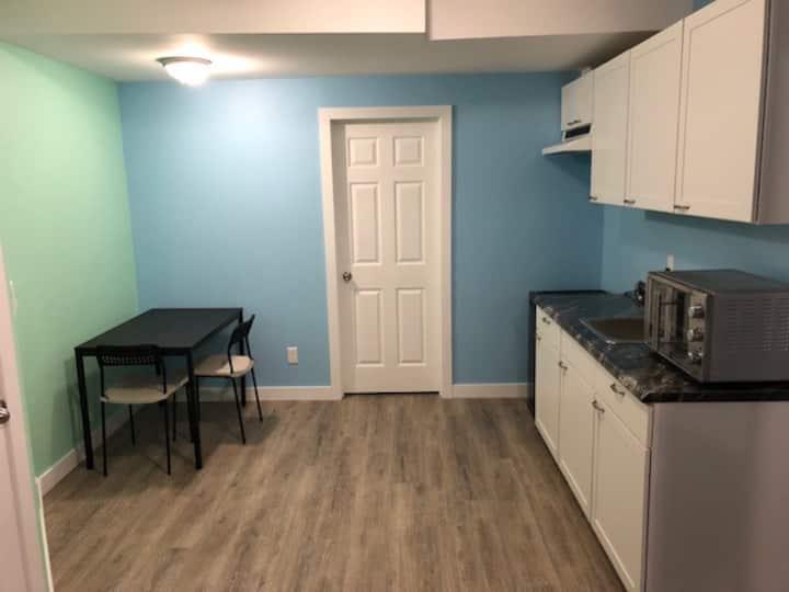 private entrance 1100 sq ft basement suite