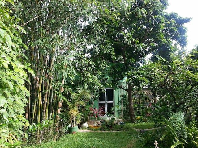 Ein Heim im paradiesischem Garten - Serrekunda - その他