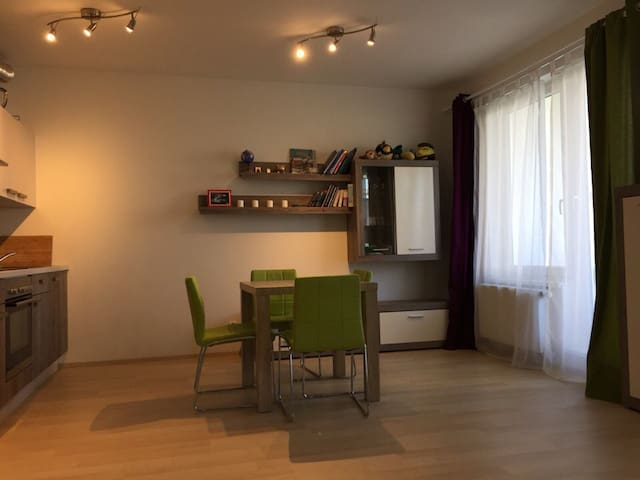 Big, bright studio in quite housing estate - Praag - Appartement