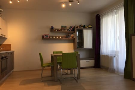 Big, bright studio in quite housing estate - Praga