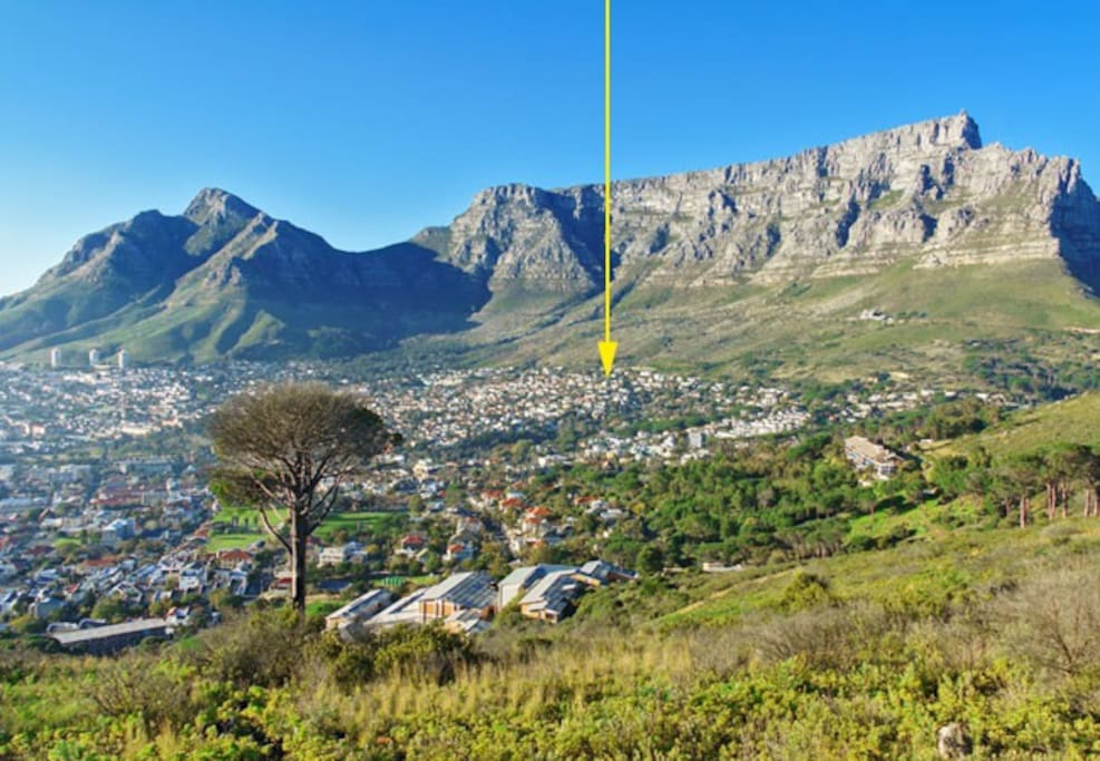 Set high up on the slopes of Table Mountain, 5 minutes into town, 10 minutes to the beach. Oranjezicht is an upmarket suburb in Cape Town's city bowl