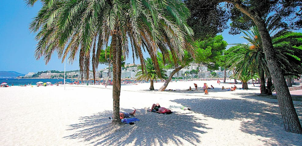 Nice apartment directly to Santa Ponsa's beach. - Santa Ponsa