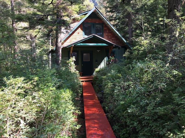 Cozy Alaskan Cottage near Whales