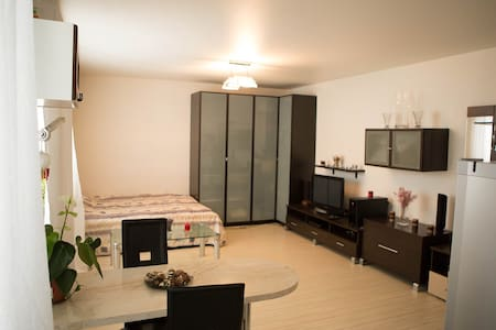 A modern studio in the heart of Moscow - Moskva - 公寓