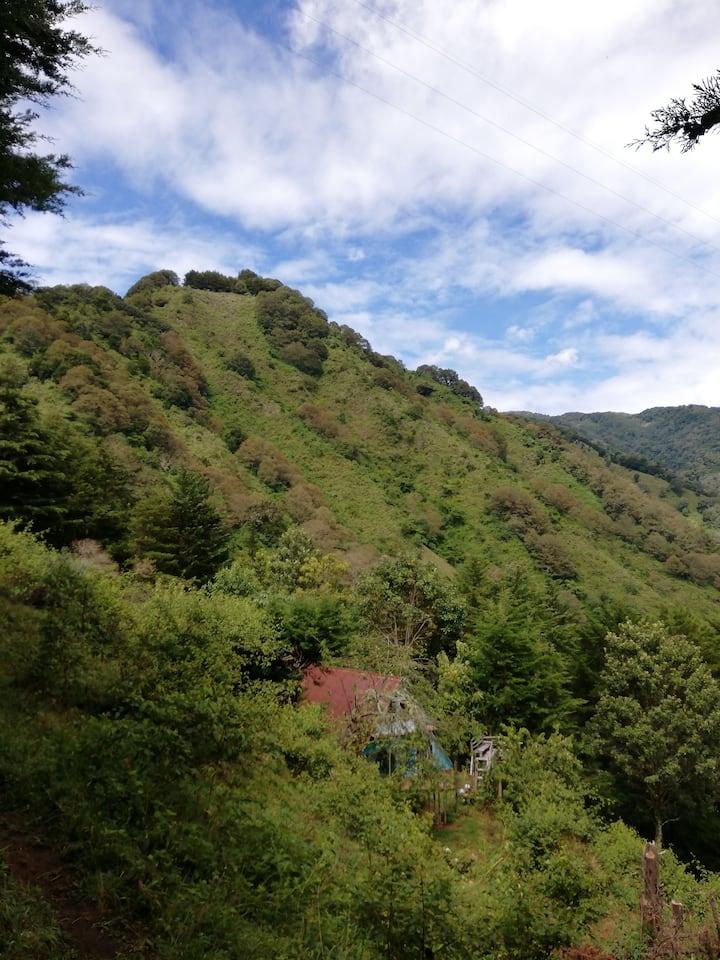 Cabaña El Descanso - Cerro de la Muerte
