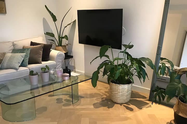 Beautiful newly renovated apartment - TOP location