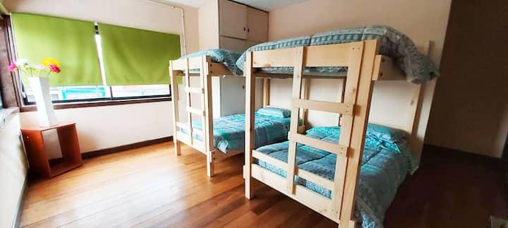 Habitaciones Newen para conocer Osorno