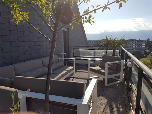 Penthouse and duplex with terraces - Genève - Appartement