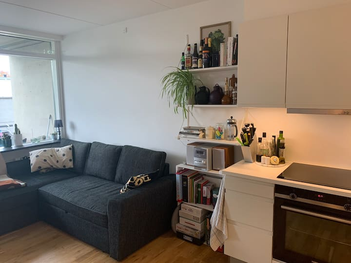Big room in shared apartment