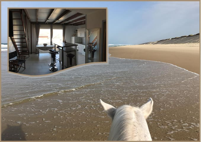 Appartement Cosy à Hourtin-Plage avec wifi !