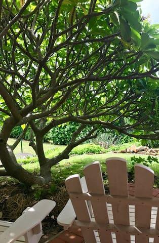 Pelicans Nest. Relaxing ocean view - Gerringong - Haus