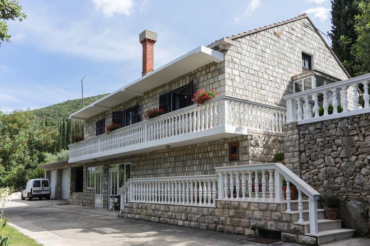 Villa Lucija in Gruda - Gruda - Huvila